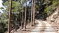 Kahokucho Nagase, Kami, Kochi Prefecture 781-4201, Japan - panoramio (19).jpg