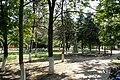 Kamyshevatskaya, Krasnodarskiy kray, Russia - panoramio (9).jpg