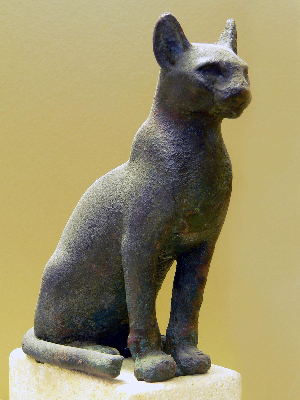 Бог египет кот