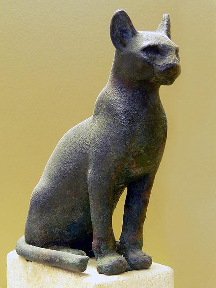 Stará černá africká kočička