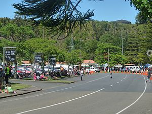 Kawerau - Plunket Street in the town centre during the 2009 Christmas Parade.