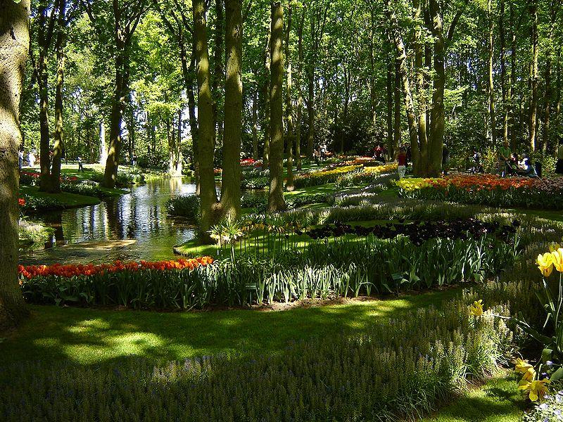 Gambar:Keukenhof Tulip Gardens 1.JPG