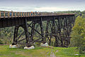 Kinzua Bridge State Park (Revisited) (2).jpg