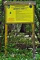 Kivertsi Volynska-Forest area-1 nature monument-information board.jpg