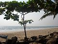 Kizhunna beach 10.JPG