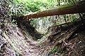 Koya Pilgrimage Routes(Nyonin-michi)18.jpg