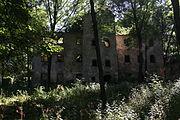 Kraszowice Ruiny palacu Bibranow.JPG