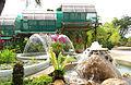 Kuala Lumpur Orchid Garden.jpg