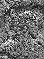 Kurangun male divinity, 2009-05-08.jpg