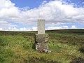 La Gruta's Grave - geograph.org.uk - 211715.jpg