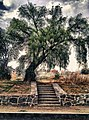 La Loma Xicohtencatl, 90070 Tlaxcala de Xicohténcatl, Tlax., Mexico - panoramio (7).jpg