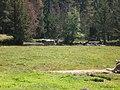 La pastura al parc nacional d'aigues tortes - panoramio.jpg