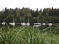 Lac de Pierre Percée - panoramio (3).jpg