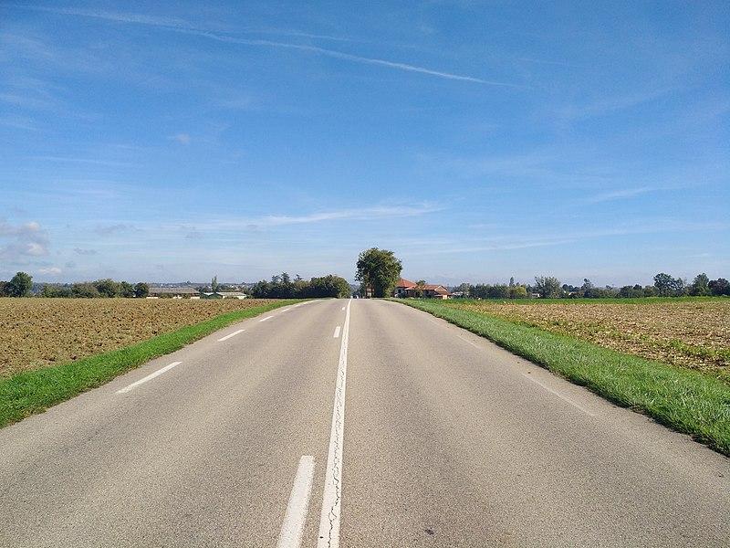 Route de Thoissey (route départementale 933) en direction du nord-est, sur la commune de Laiz (Ain, France).