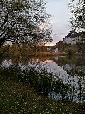 Wil - Autumn sunrise at the lake of Wil.