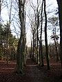 Landgoed (Estate) Einde Gooi, Hilversum, Holland - panoramio.jpg