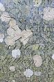 Lands End Memory (4113063122).jpg