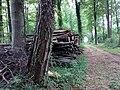 Landschaftsschutzgebiet Strothheide Melle Datei 20.jpg