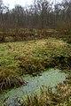 Landschap De Stroopers te Kemzeke - 371880 - onroerenderfgoed.jpg