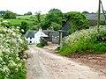 Lane at Nant - geograph.org.uk - 1346338.jpg