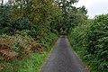 Lane heading north from Nant-glas - geograph.org.uk - 947537.jpg