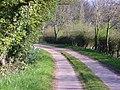 Lane leading to Woodland Walk at Cosford Grange - geograph.org.uk - 394316.jpg