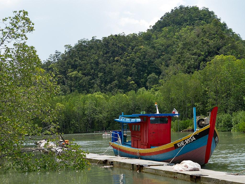 https://upload.wikimedia.org/wikipedia/commons/thumb/6/6b/Langkawi_Malaysia_mangrove-Tour-Jetty-01.jpg/1024px-Langkawi_Malaysia_mangrove-Tour-Jetty-01.jpg