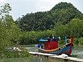 Langkawi Malaysia mangrove-Tour-Jetty-01.jpg
