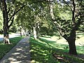 Lanson Park, Weston, Massachusetts - DSC00524.JPG