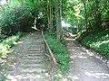 Lassahn Treppe Weg 2008-06-02 038.jpg