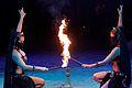 Le cirque Amar en Algérie 2.jpg