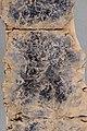 Lead curse tablet, 3rd century BC, AM of Nemea, 201807x.jpg