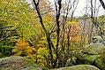 Ledges at Cuyahoga Valley National Park (10544211205).jpg
