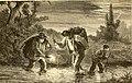 Les poissons des eaux douces de la France; anatomie-physiologie-description des espèces-moeurs-instincts-industrie-commerce-resources alimentaires-pisciculture-législation concernant la pêche (1880) (14764125415).jpg