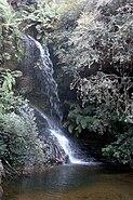 Leura - waterfall