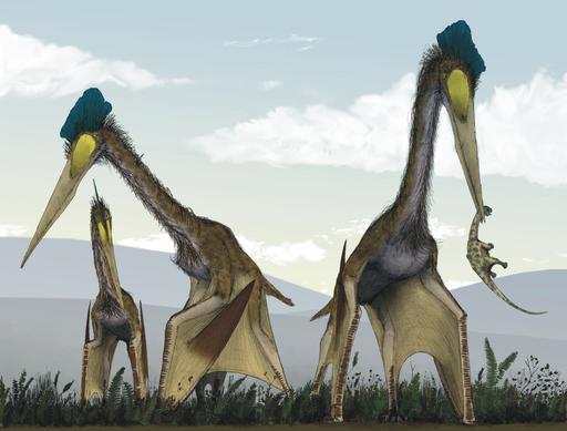 Life restoration of a group of giant azhdarchids, Quetzalcoatlus northropi, foraging on a Cretaceous fern prairie