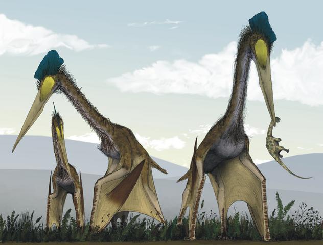 632px-Life_restoration_of_a_group_of_giant_azhdarchids%2C_Quetzalcoatlus_northropi%2C_foraging_on_a_Cretaceous_fern_prairie.png