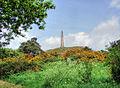 Lilleshall Monument - geograph.org.uk - 170385.jpg