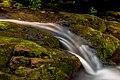 Little Union River Mossy Waterfall PLC-WF-10.jpg