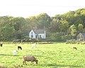Llwyncoed Farm - geograph.org.uk - 268822.jpg