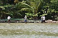 Locals fishing in the lagoon (7567884118).jpg
