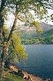 Loch Voil - geograph.org.uk - 122019.jpg