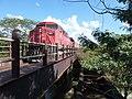 Locomotiva de comboio que passava sentido Boa Vista pela ponte ferroviária sobre o Ribeirão Piraí, limite dos municípios de Salto e Indaiatuba - Variante Boa Vista-Guaianã km 212. À direita, antiga pon - panoramio.jpg