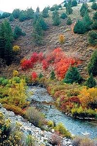 Logan River.jpg