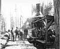 Logging crew and donkey engine, Danaher Lumber Company, ca 1916 (KINSEY 139).jpeg