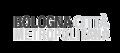 Logotype Città metropolitana di Bologna.png