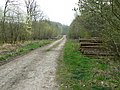London Ride, Bedwyn Common, Great Bedwyn (2) - geograph.org.uk - 399108.jpg