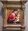 Luca signorelli, madonna col bambino, 1507.JPG