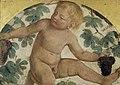 Luini - Putti Harvesting Grapes – Putto under a Vine Trellis, c. 1514, 5531.jpg