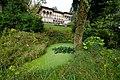 Luzern Villa Bellerive pond.jpg